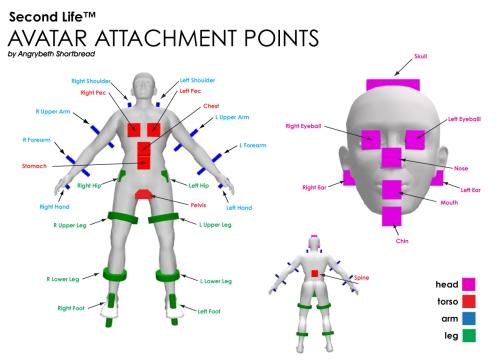 avatarattachpoints